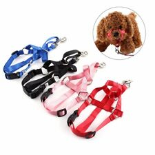 Halter Harness - Stops Dogs Pulling - Walk Easy - No pull - Lead pets gently