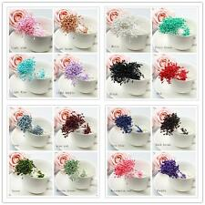 280 x Artificial Flower Stamen Double Tip Pearlized Craft Cards Cake Decoration#