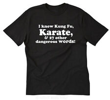 I Know Kung Fu, Karate, & 27 Other Dangerous Words T-shirt Funny Tee Size S-5X