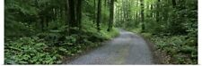Poster Print Wall Art entitled Tennessee, Great Smoky Mountains National Park,