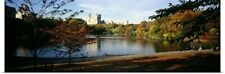 Poster Print Wall Art entitled Pond in a city, Central Park, Manhattan, New York