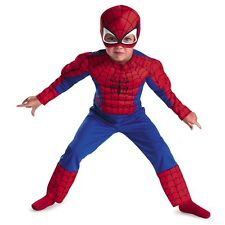 Toddler Muscle Spider Man costume For Kids