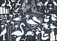 LOT 62 SAMPLER-VARIED TROPICAL BIRD DIE CUTS* FLAMINGO PELICAN TOUCAN *READ POST