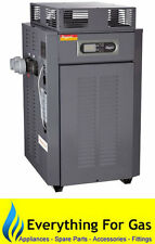 Raypak 350 Domestic Gas Pool Heater - LPG or Natural Gas