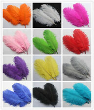 Beautiful! High Quality《6-8 inch/15-20 cm》Natural OSTRICH FEATHERS 10-200pcs