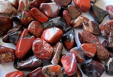 *1/4 LB* Brecciated Jasper Tumbled Stone 15-25mm QTY 4oz Healing Crystal Shamans