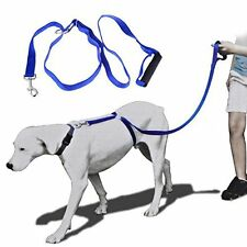 CUBE MARKET PET SHOP New Instant Trainer Leash As Seen On TV Large – Over 30 ...