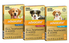 ADVOCATE® for Dogs - Fleas, Heartworm and Worms (6-Pack)