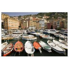 Poster Print Wall Art entitled Italy, Camogli, Boats moored in harbor with