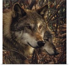 Poster Print Wall Art entitled Autumn Wolves