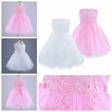 Baby Girls Lace Tutu Dress Princess Wedding Party Flower Kids Pageant Prom Gown