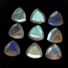 4mm To 12mm Natural Labradorite Faceted Cut Trillion  Calibrated  Loose Gemstone
