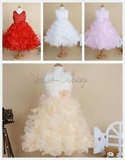 Princess Flower Girl Wedding Party Ruffle Dress Kid Pageant Bridesmaid Communion