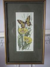 CASH'S FRAMED & GLAZED SILK PICTURE SWALLOWTAIL BUTTERFLY