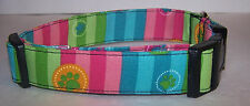 Wet Nose Designs Brightly Colored Paws and Stripes Dog Collar Blue Pink Green