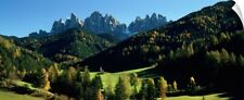 Wall Decal entitled Trees on a landscape, Dolomites, Funes Valley, Le Odle,
