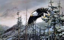 Art Wall Picture Home Deco Snow Landscape Animal Eagle Print Oil painting Canvas