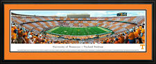 NCAA Double Matted Deluxe Framed Stadium Panoramic 29 TEAMS - NEW