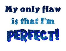 Custom Made T Shirt My Only Flaw Is I'm Perfect Attitude Funny Humorous Ego