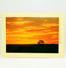 """Birthday Notecards by Photographer Sue Wiebelhaus 5"""" x 7"""" with Envelope"""