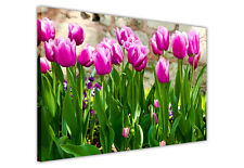 PURPLE TULIPS CANVAS PRINTS WALL ART PICTURES / FLOWER DECORATION PHOTOS GREEN
