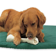 Drs. Foster and Smith Premium Natural Rawhide Bones