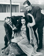 THE MUNSTERS LILY,HERMAN,GRANDPA PHOTO OR POSTER
