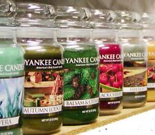 (F-L Scents) Yankee Candle LARGE 22 oz JAR CANDLES Variety New & Retired CHOICES