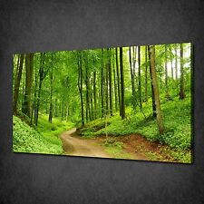 ROAD IN THE GREEN FOREST LANDSCAPE CANVAS PRINT PICTURE WALL ART FREE UK P&P