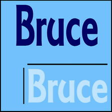 Bruce Wall Quote! 44x100cm Interior Home Transfer, Removable Boys Room Sticker