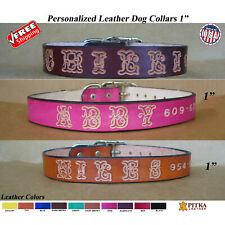 Custom made Leather Dog Collars - Dog Collar with Name - Large Dog Collar - USA