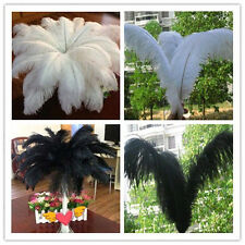 Wholesale 10-100pcs High Quality Natural  Ostrich Feathers 6-24inch/15-60cm Hot!