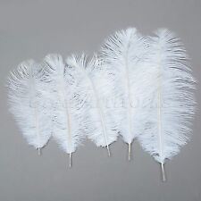 "20-40cm 8-16"" DIY Craft White Natural Ostrich Feathers Wedding Party Decor 10Pcs"