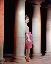 AUDREY HEPBURN RARE PHOTO FULL LENGTH PHOTO OR POSTER