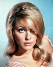 SHARON TATE LOVELY CLOSE UP PORTRAIT PHOTO OR POSTER