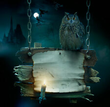 Modern Home Decor HD Prints art oil painting canvas wall art Fantasy owl NTD100