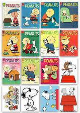Peanuts Snoopy, Charlie Brown Refrigerator Magnets fridge Magnets