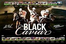 BLACK CAVIAR LUKE NOLEN PETER MOODY SIGNED L/E COLLAGE PRINT ONLY OR FRAMED
