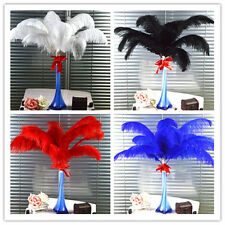 Wholesale 10pcs-100pcs High Quality Natural OSTRICH FEATHERS 6-20'in/15-50cm