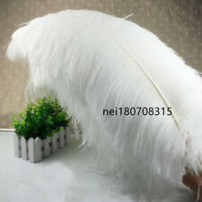 Wholesale/10-100pcs High Quality Natural WHITE OSTRICH FEATHERS 6-28inch/15-70cm