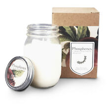 Inartisan Candles & Candle Holders NEW Hand Poured Soy Candle In Large Mason Jar