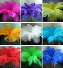 beautiful 10-100pcs 10-12 inch/25-30 cm high quality natural Ostrich feathers