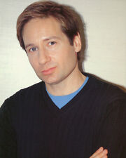 David Duchovny Color Poster or Photo