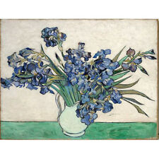 Van Gogh Painting Reproduction Irises Flower Canvas Print Home Decor Art Framed