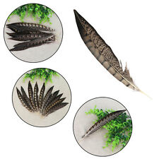 10/20/30pcs Beautiful Natural Pheasant Feathers Wedding Crafts Trimmings Party