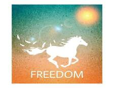 Custom Made T Shirt Freedom While Silhouette Running Horse Feathers Sun