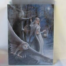 Midnight messenger canvas by  anne stokes