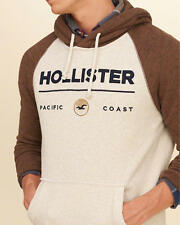 Abercrombie & Fitch - Hollister Mens Graphic Fleece Hoodie S L or XL Cream NWT