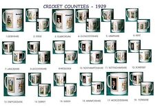 CRICKET 1929.ENGLISH COUNTIES...MUGS.18  DESIGNS.NEW.BNIB