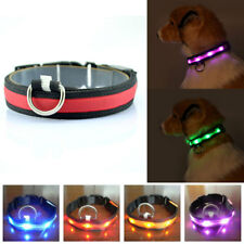 New LED Glow Flash Dog Cat Puppy Nylon Pet Light-up Safety Collar